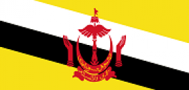 Country Facts | Brunei Darussalam